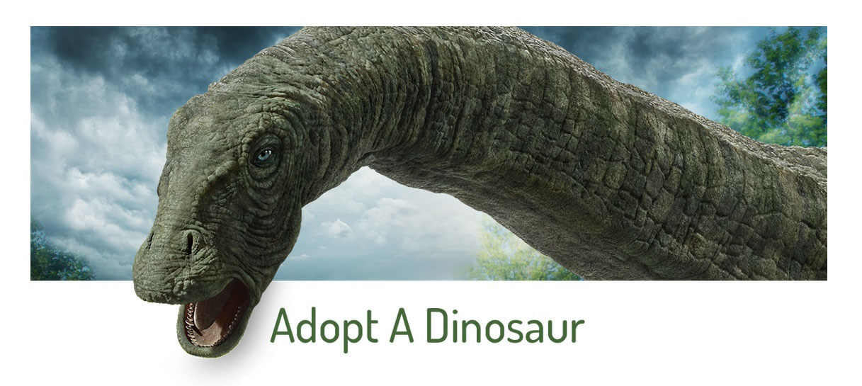Claire Dearing Invites You To Adopt-A-Dino Through the DPG